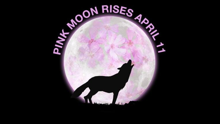 52d33070-112119_Pink_Moon_Social_Media_1000x1000_002_1491871854934-404023.jpg