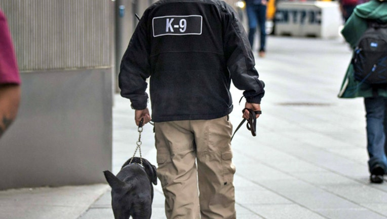 GETTY k9 police dog_1525829097794.jpg-404023.jpg