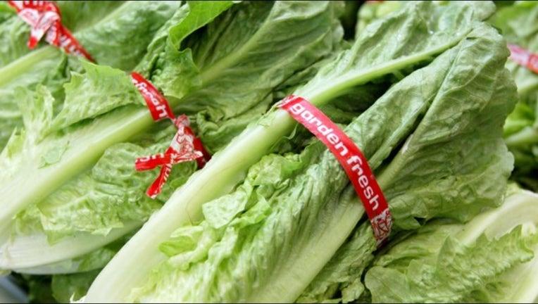 25e01d27-lettuce GETTY_1515102519659.PNG-407068.jpg