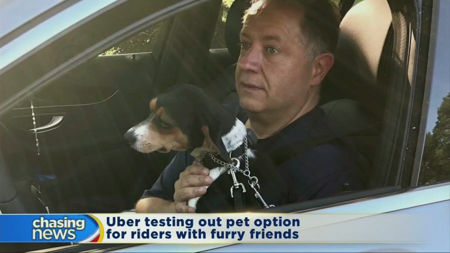 Uber testing pet option in select cities
