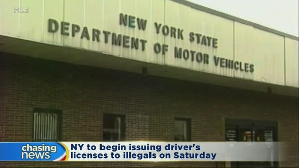 NY to begin offering driver's licenses to illegals