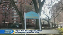 NYCHA residents complain about roaches and bedbugs