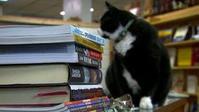 Tacoma book store booming during quarantine