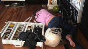 Woman says house cleaner got drunk on her liquor, trashed apartment before passing out