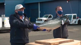 Copper River salmon arrive in the PNW, and frontline workers get the first taste