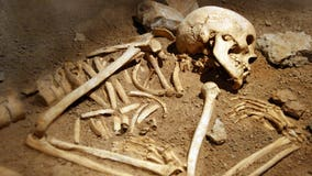 500-year-old skeletons sought by 3 Native American tribes