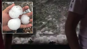 At least 8 people hurt, 3 animals killed by large hail at Colorado zoo