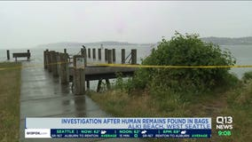 Human remains washed up near Alki Beach ID'd as 27-year-old man, 36-year-old woman