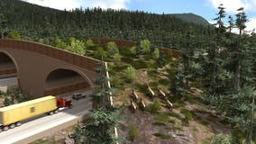Animal overpass project now visible to westbound motorists