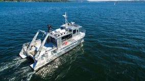 King County boat joins emergency effort to save emaciated orca J50