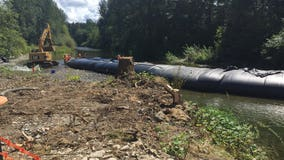WSDOT pushes back the Pilchuck River to save highway, homes