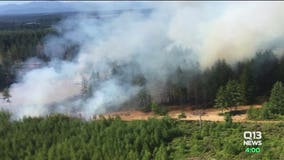 Mason County sheriff: High number of wildfires 'suspicious,' sets up task force to investigate