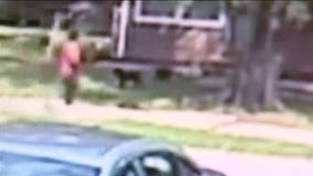 Cameras catch man shooting, killing 2-month old puppy outside Kansas City home