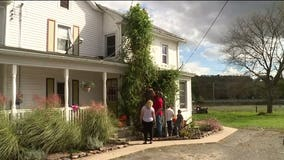 'I don't know why it got that big': Tomato plant towers over Pennsylvania home