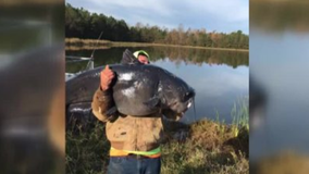 North Carolina man reels in massive 112-pound catfish