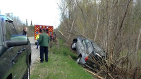 Spider blamed for causing rollover crash