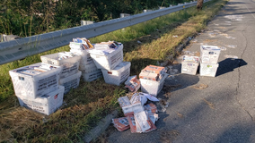 Postal worker quits, boxes of mail found dumped on side of New Jersey road