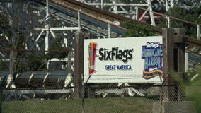 9 arrested after attack at Illinois Six Flags leaves family hospitalized