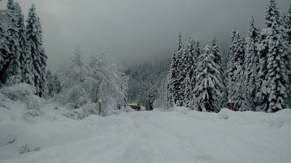 Like the cold rain and snow? New winter outlook suggests plenty around Northwest
