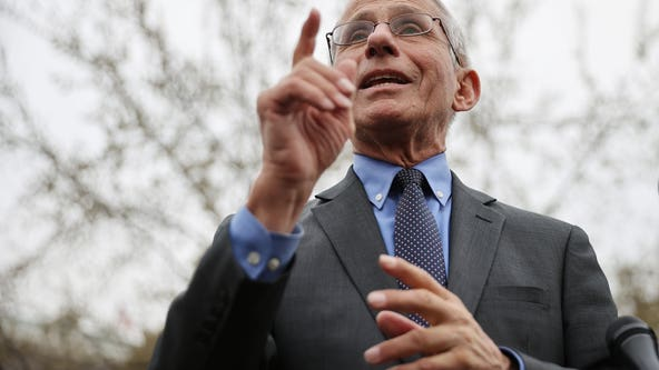 Fauci says mutation of coronavirus spreads quickly: report
