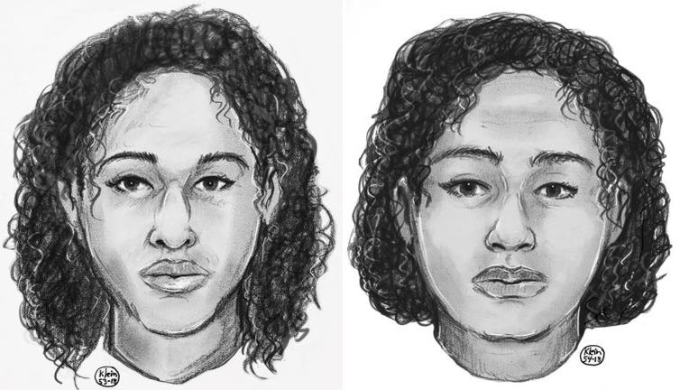 Police released a sketch of the two women found laying on rocks near the Hudson River off of Riverside Park. (DCPI)