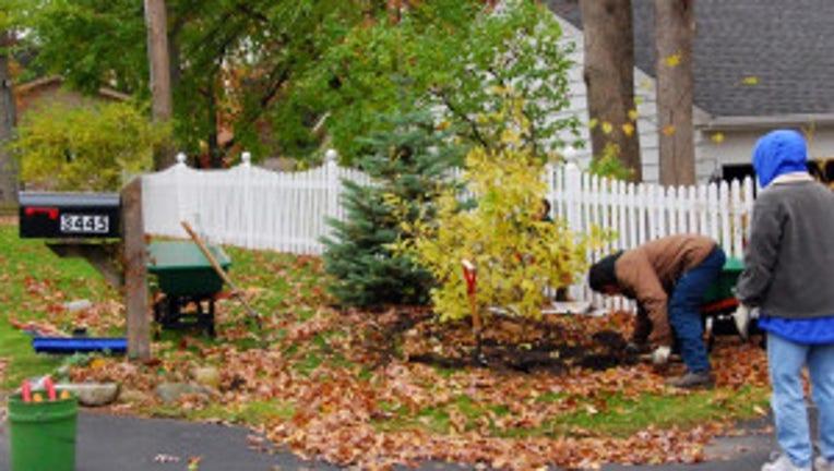 late fall gardening