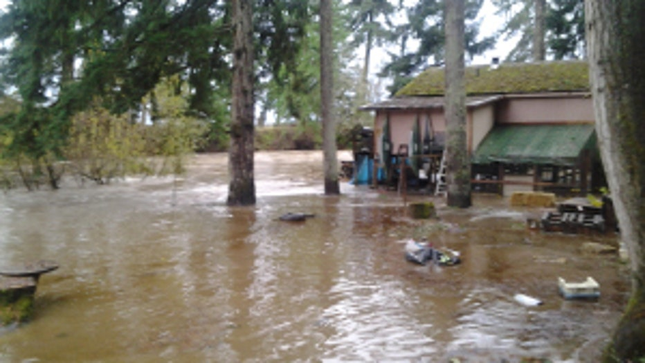 Yelm backyard river