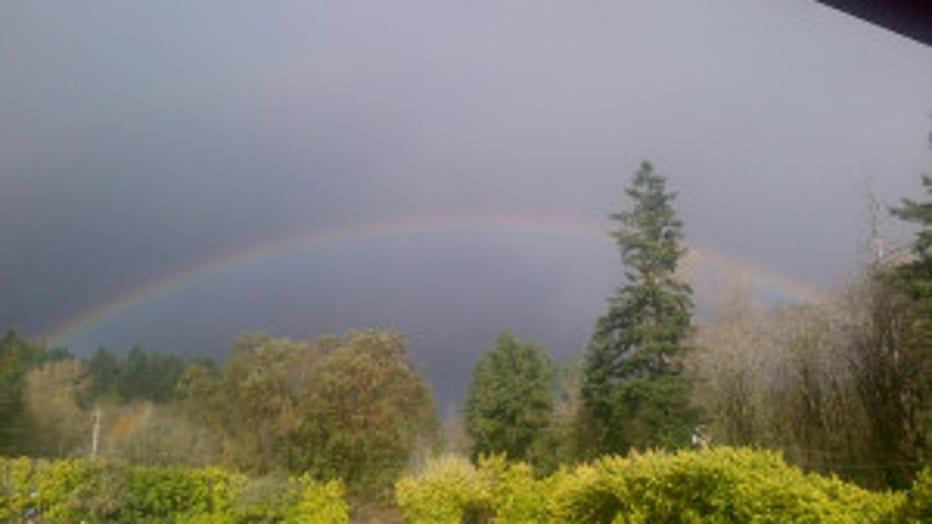 RainbowWholeSky