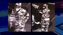 Police searching for Seattle armed robbery suspect wearing camo outfit, designer mask