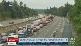 Deadly crash involving pedestrian on I-5
