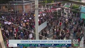 Council weighs deep cuts to SPD budget