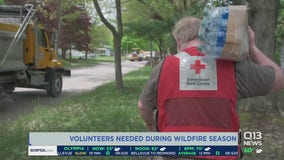 Volunteers needed for projected busy wildfire season