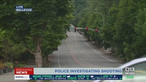 One injured, suspect sought after shooting in Bellevue