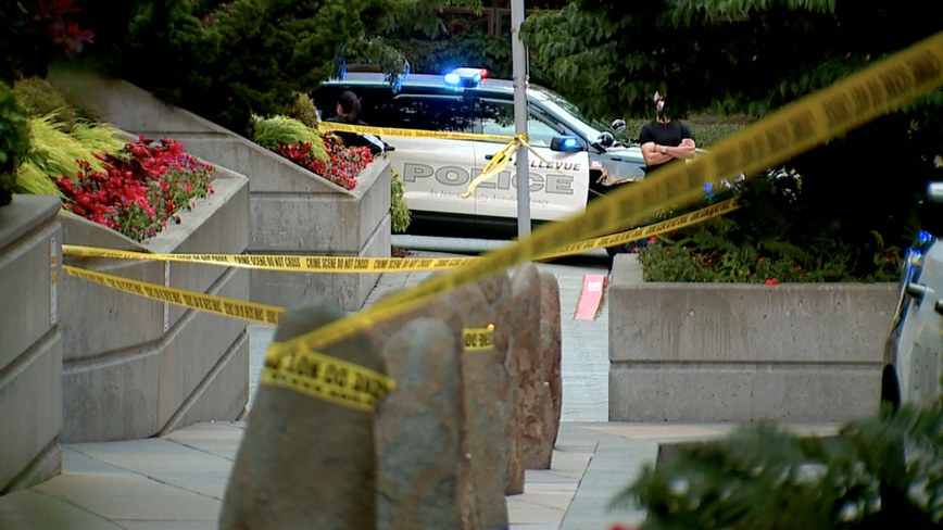 Two dead, two injured in shooting, stabbing at Bellevue apartment