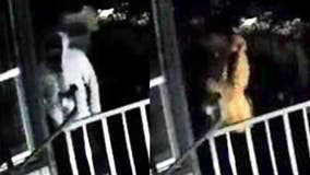 Help ID serial burglary suspects believed to have hit same house three times