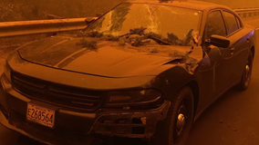 Oregon wildfires cause fire-damaged tree to fall on state trooper's vehicle