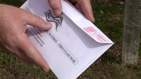 Michigan Judge rules absentee ballots delivered late but postmarked before election day must be counted