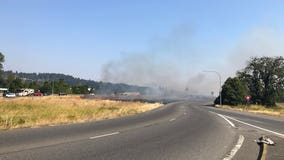 WSP: Man arrested for setting fire in median of SR 167 in Puyallup