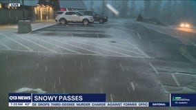 Snow falling at Snoqualmie Pass