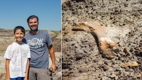 12-year-old boy finds 69 million-year-old dinosaur fossil during hike with his dad