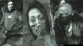 Help ID crew of crooks seen breaking into ATM, stealing from apartment parking garage on Bainbridge Island