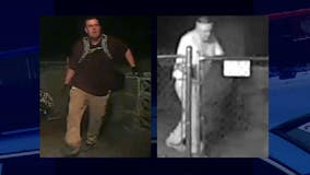 Help ID pair of bold backyard burglars who unscrewed flood light on way in, wiped fingerprints on way out