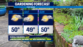 Weekend gardening outlook: great for November