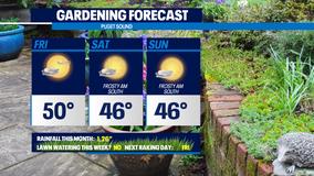 Weekend gardening outlook: breezy but beautiful