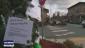 Snohomish Giving Trees supports local nonprofits recovering from COVID-19 challenges