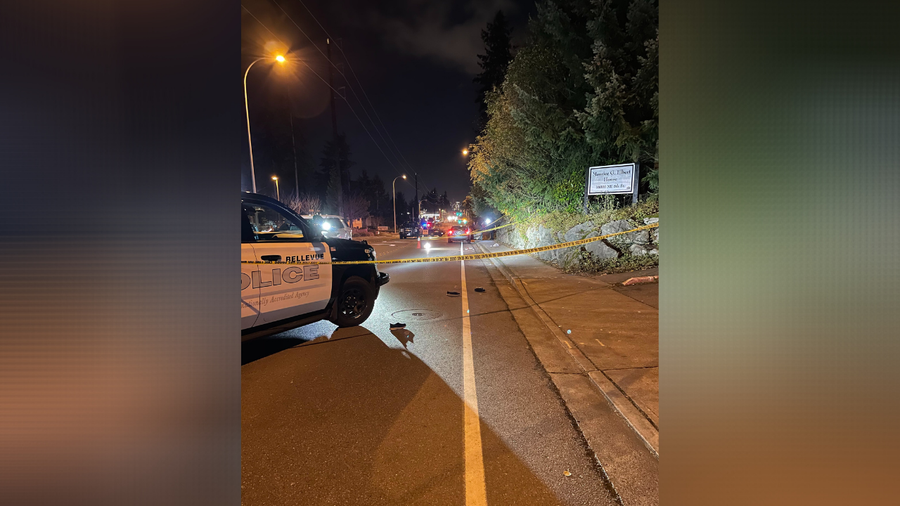 Driver fatally hits 92-year-old pedestrian in Bellevue