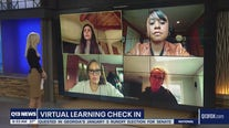 The virtual learning curve continues