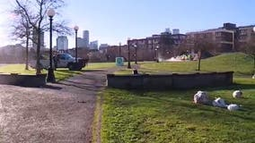 Cal Anderson Park reopens after homeless camp sweep