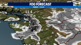 Freezing fog returns overnight!