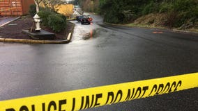 Officer struck by stolen car fleeing police in Bonney Lake, deputies say